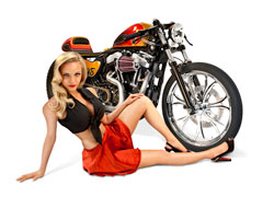 Harley-Davidson Sportster 48 modified café racer will be in K&N's 2012 SEMA Booth