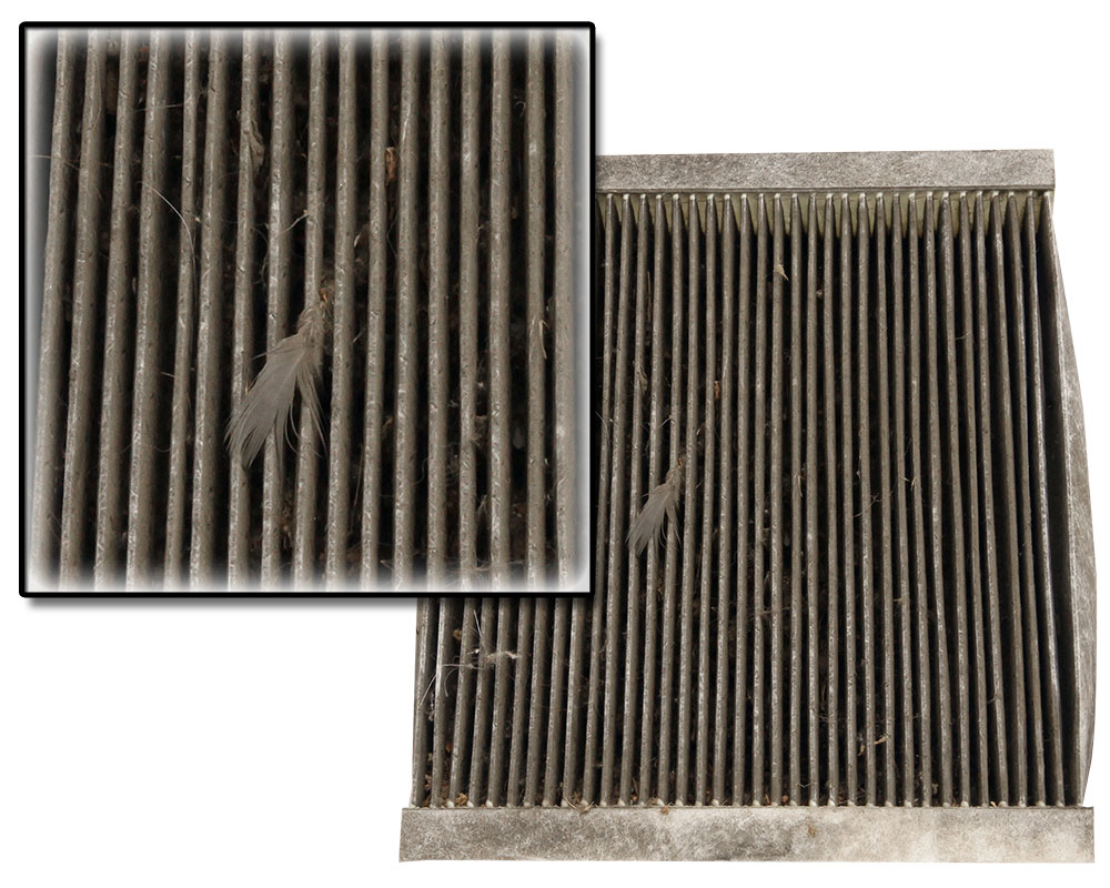 Replacing a dirty or clogged cabin air filter, like the one seen above,  helps