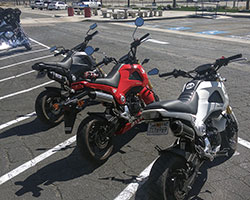 2013-2014 Honda Grom / MSX125 motorcycles might not be the biggest kid on the block but they certainly can boast more smiles per gallon than larger more expensive bikes