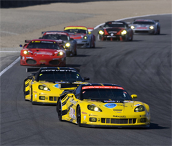 After qualifying first and third, twin Corvettes ran one-two until the first round of pit stops during the ALMS season finale at Laguna Seca, photo by GM Corp.