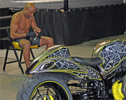 One of the world's top ranked Mixed Martial Artists Anderson Silva and his striking new custom Hayabusa