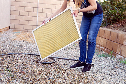 Gently shake excess water from the filter and allow it to air dry