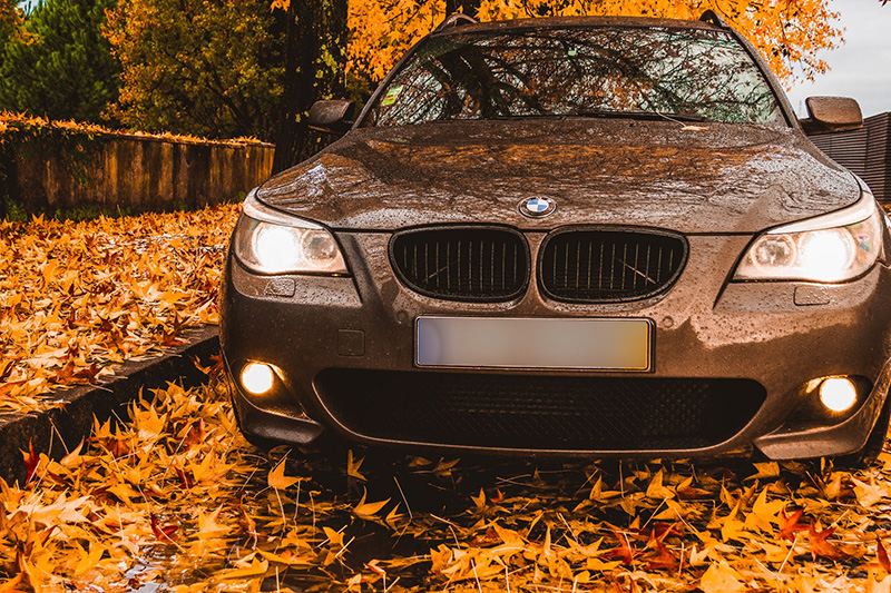 BMW parked in leaves